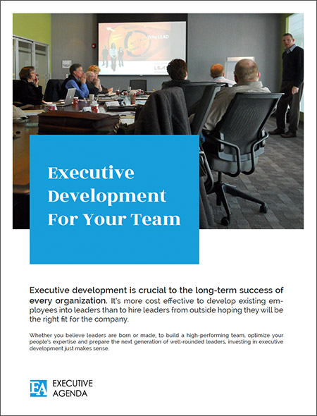 Executive Development for your Team - PDF
